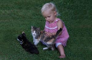 Kind mit Katzen