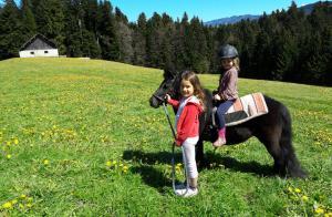 kinder mit pony